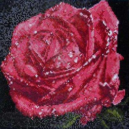 Роза выглаженная камнями