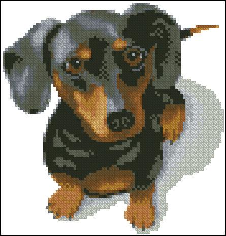 Вышивка собачек