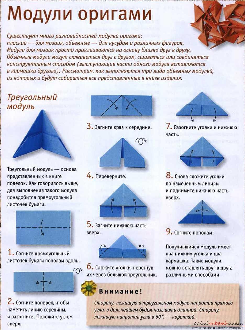 Сколько сантиметров модули оригами