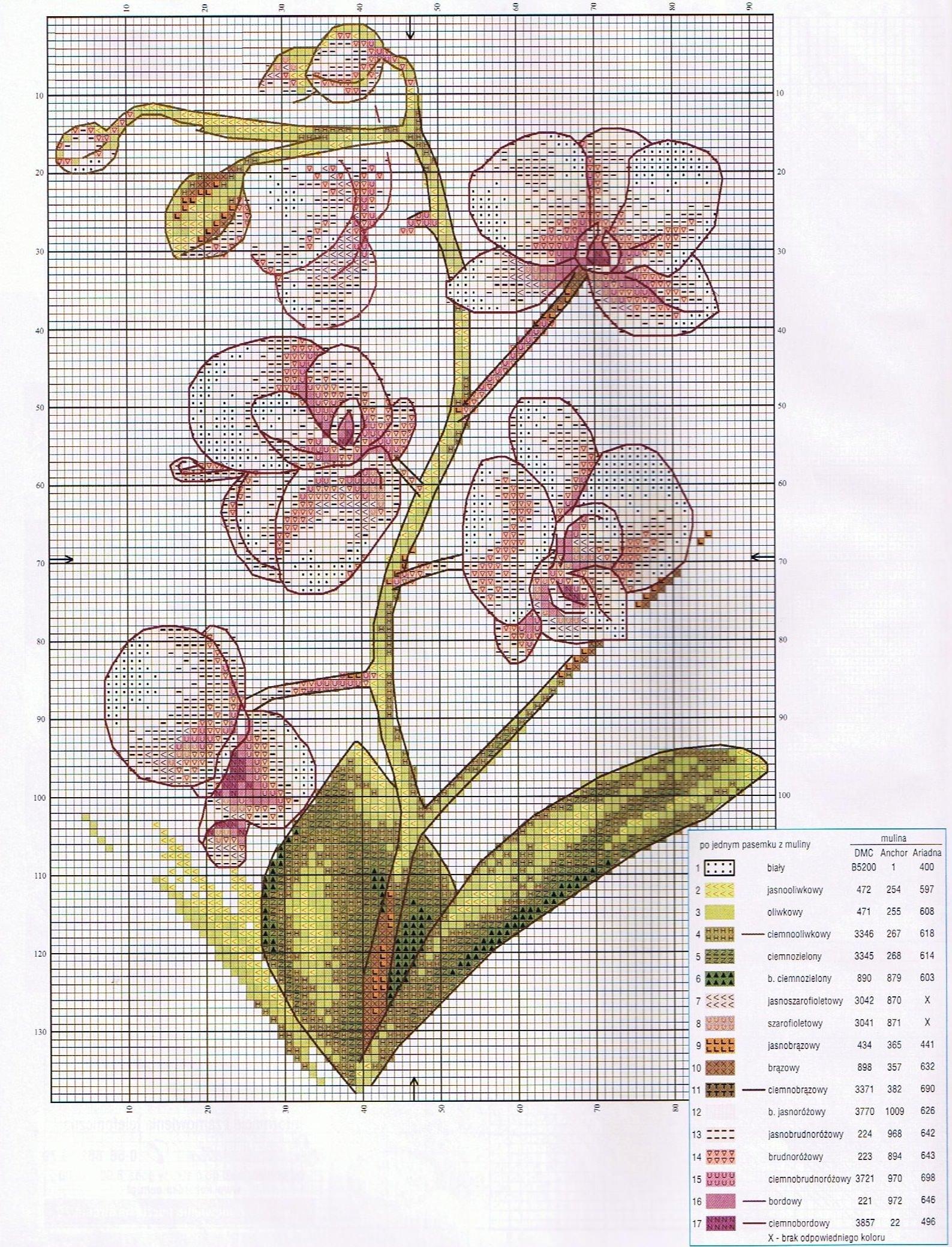 Схемы для вышивки крестом восхитительных тропических орхидей