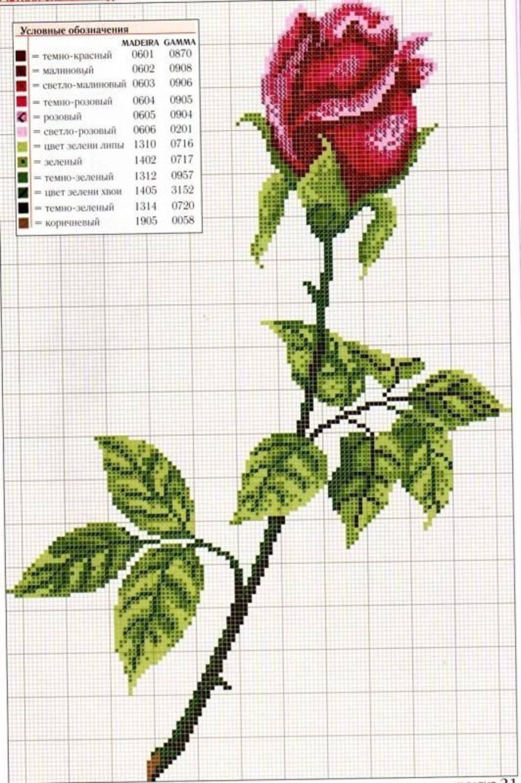 схема вышивания розы крестиком для начинающих