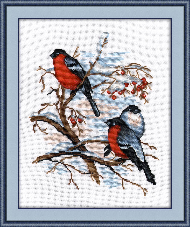 Набор для вышивки крестом птицы