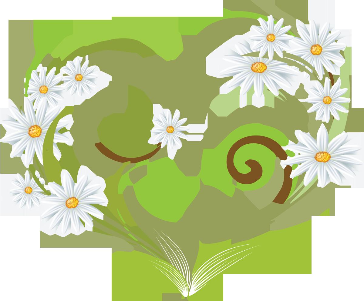мечети пятницу картинки с ромашками как символом любви интерьера пекарни