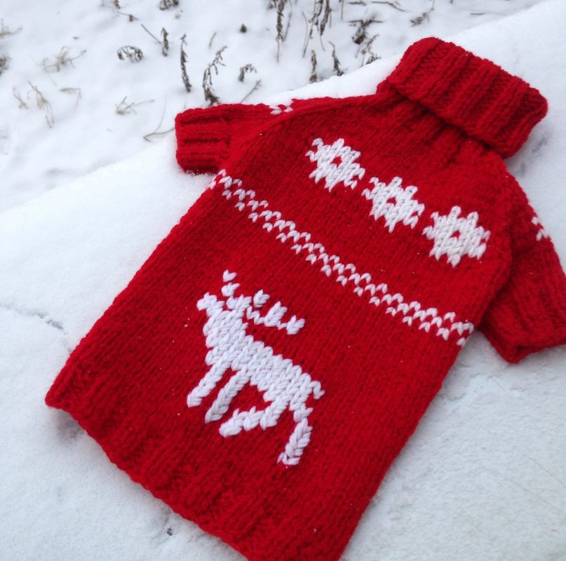 Вязание собачкам свитера на спицах 994