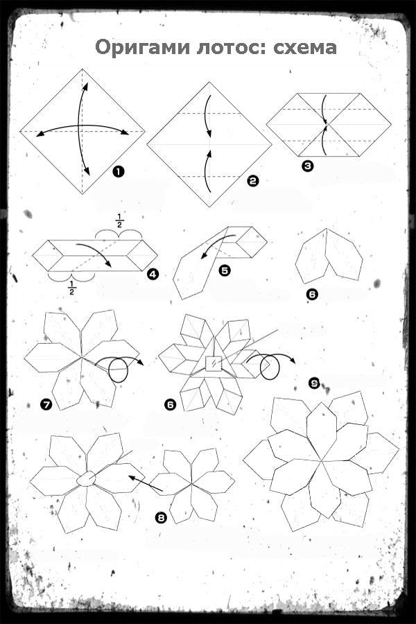 Оригами лотос в подробных фото и видеоуроках.
