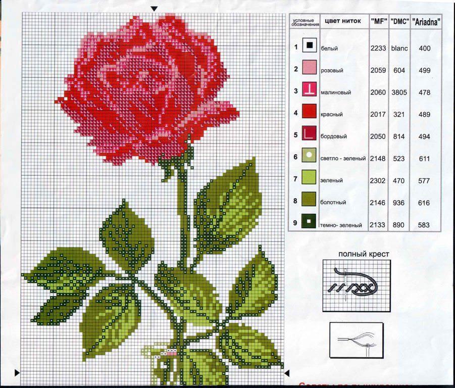 Вышивка крестом роза для начинающих