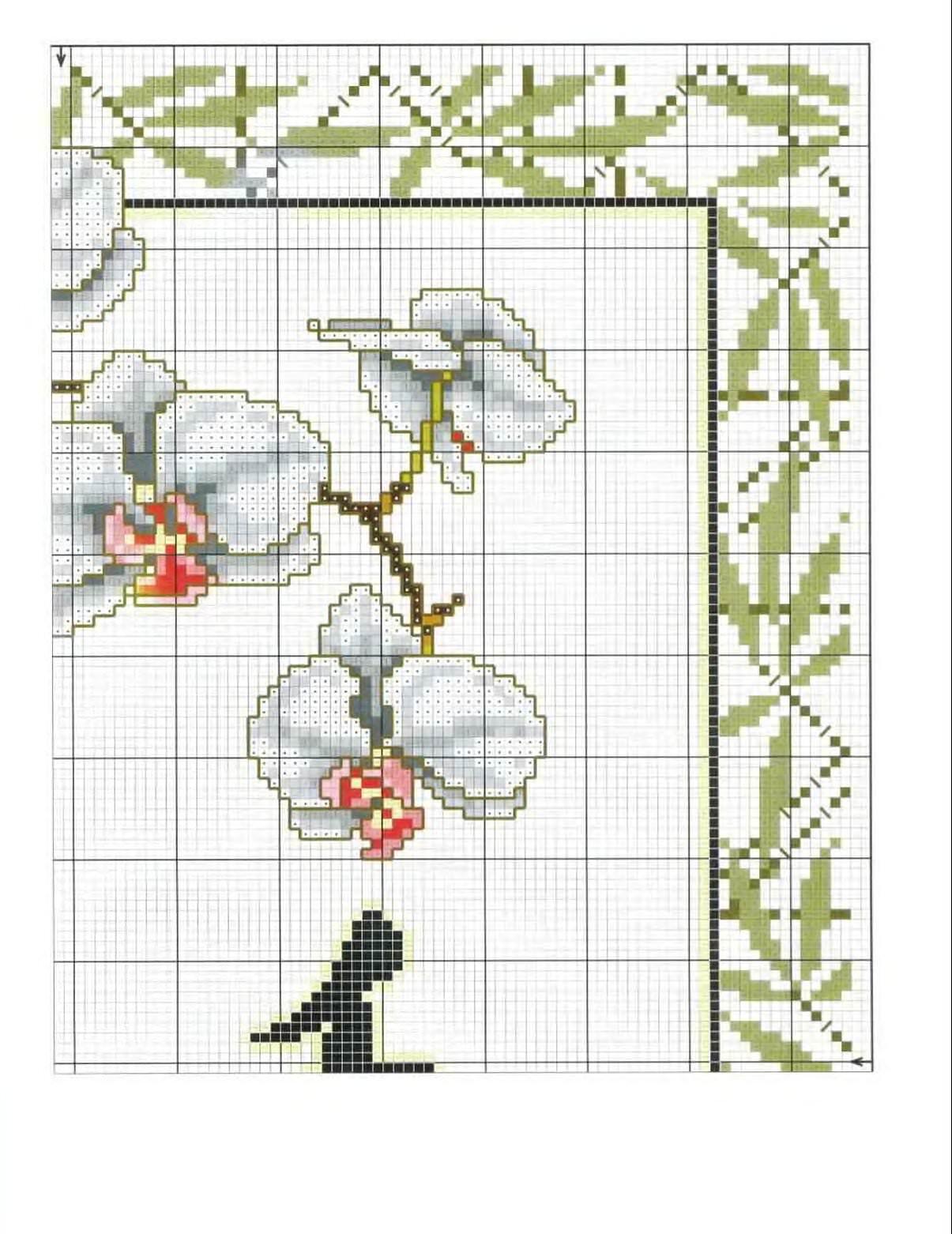 Схема вышивки цветка орхидеи
