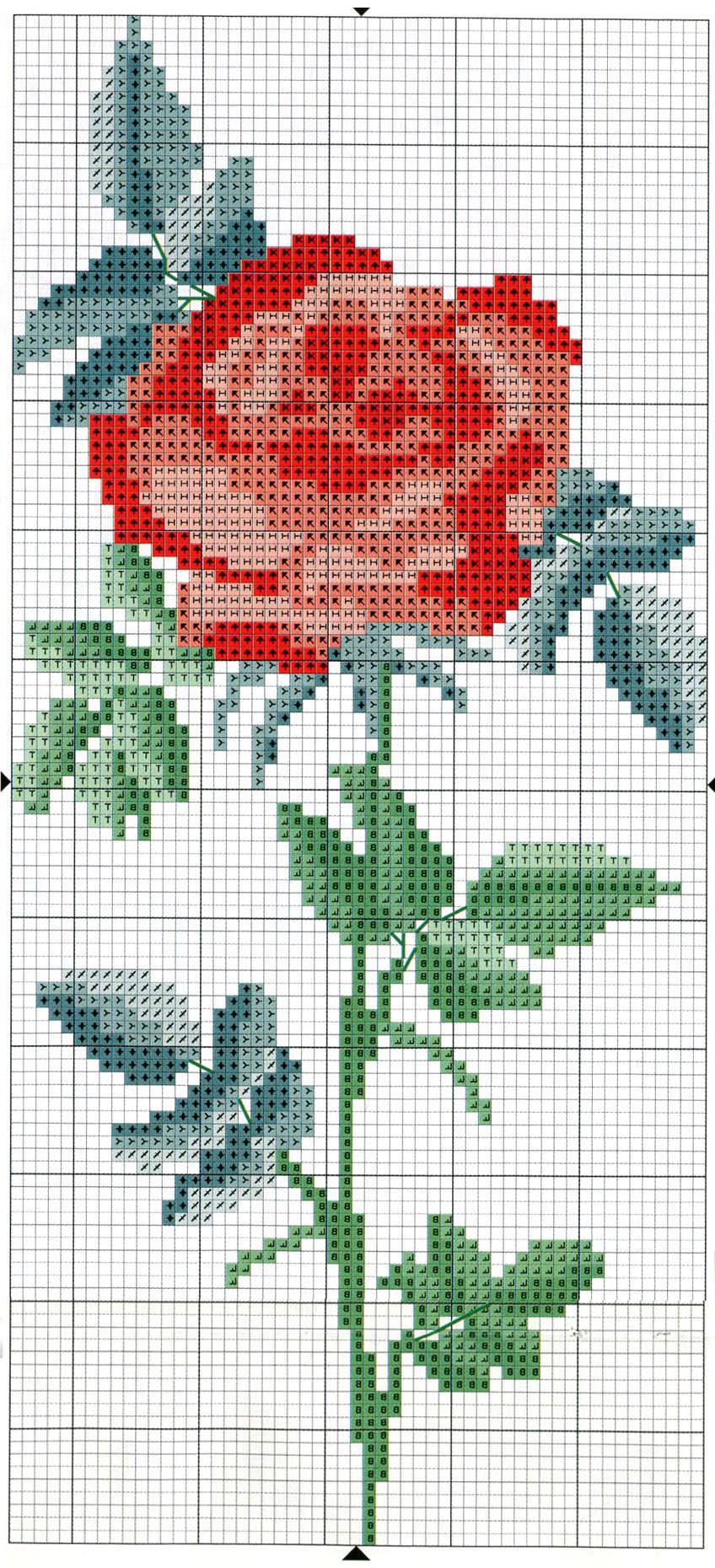 Схема вышивки крестом фото роза