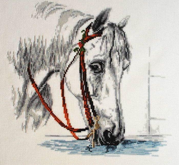 Фото вышивки крестом лошади