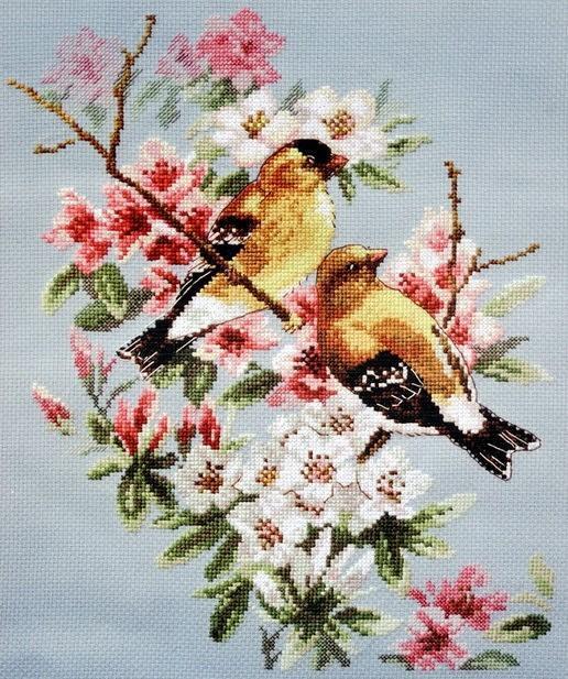Схемы для вышивки крестом птиц фото